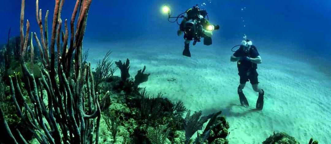 Dive Package: Top Hotel & Top Dive Center