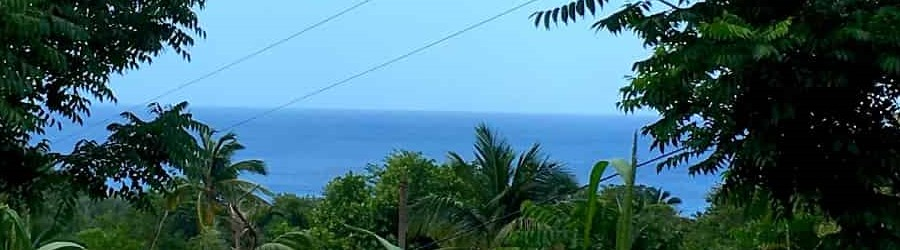 A Sunday Morning Walk in the North of Dominica