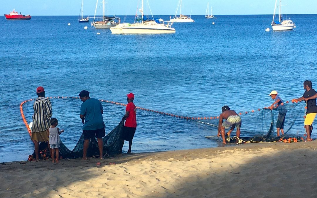 Catching fresh fish in Dominica…